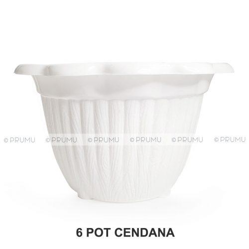 pot-clio-cendana-putih-6