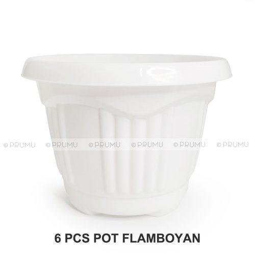 clio flamboyan20 putih 6