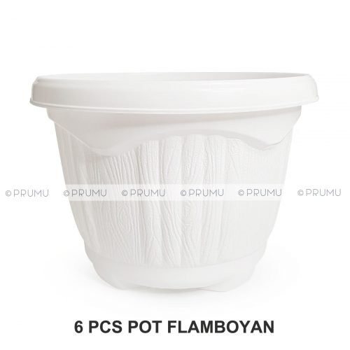 pot-clio-flamboyan30-6